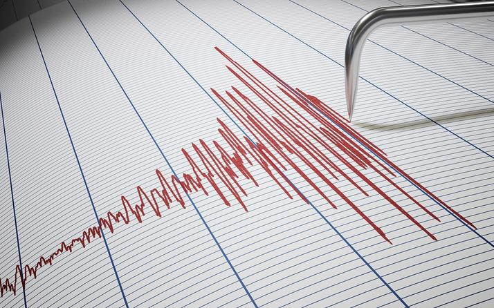 İzmir'de korkutan deprem! AFAD şiddetini açıkladı