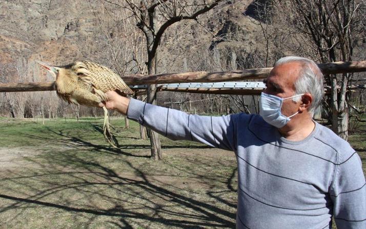 Nesli tükenmek üzereydi! Erzurum'da ilk defa gördü sarhoş gibiydi