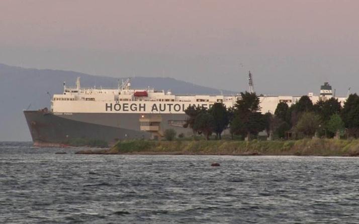 Tuzla'da karaya oturan gemi kurtarılmayı bekliyor