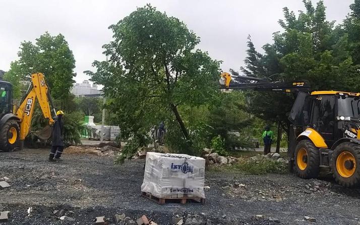 Beylikdüzü'nde belediye ekiplerinin 160 ağacı söktüğü iddiası tepki çekti