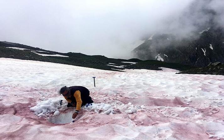 Akılalmaz! Alpler'de 'kırmızı kar' görüldü