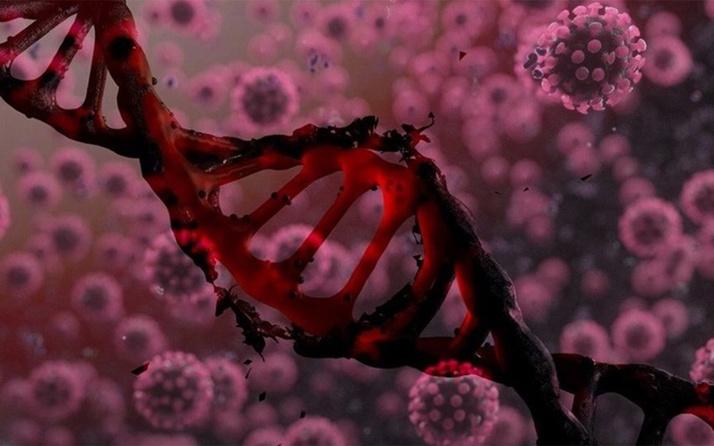 DSÖ'den koronavirüste delta varyantı uyarısı: Savunmasızları seçiyor