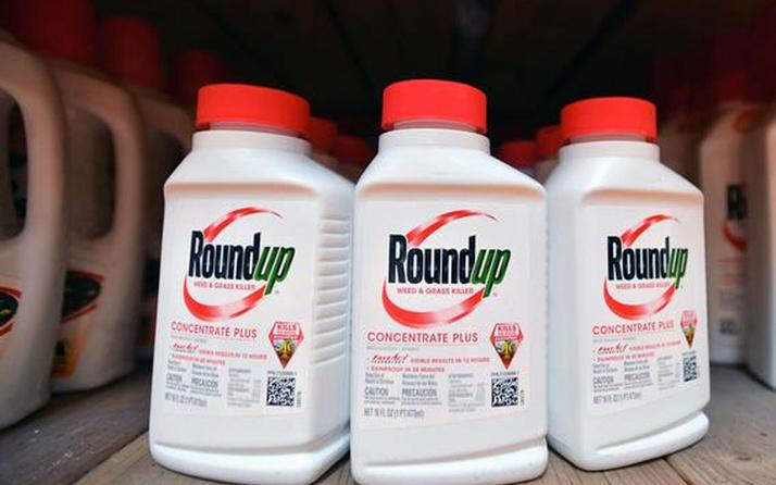 Alman ilaç şirketi Bayer'e ABD'de yeni glifosat davası açıldı