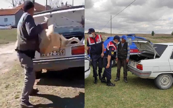 Köpeğini bagaja kilitleyin sosyal medyada paylaşan kişiye 2 bin lira ceza
