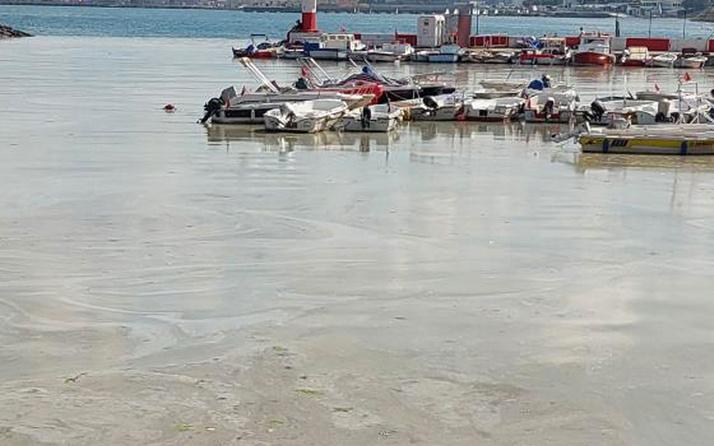 İstanbul Valisi Ali Yerlikaya İstanbul'da temizlenen müsilaj miktarını açıkladı