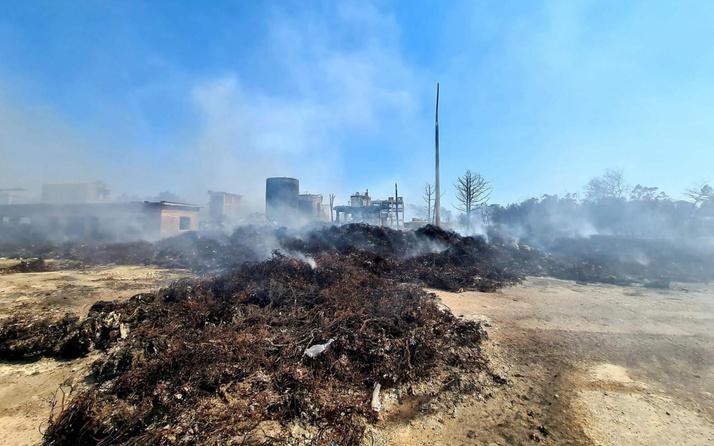 Muğla'da fabrika yangını ormanlık alana sıçradı! Rekor ceza kesildi