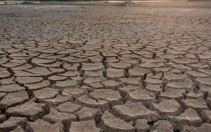 Prof. Dr. Levent Şaylan kuraklık konusunda uyardı: Erken önlem almamız gerekiyor