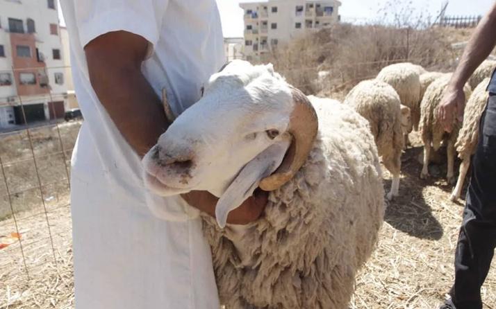 Kurban kesilirken okunacak Arapça dua Diyanet anlamı nedir?