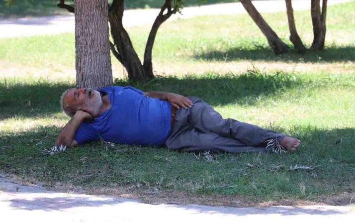 Adana cehennem gibi yanıyor! Sıcaktan fenalaşıp gölgede uyudu öldü sandılar