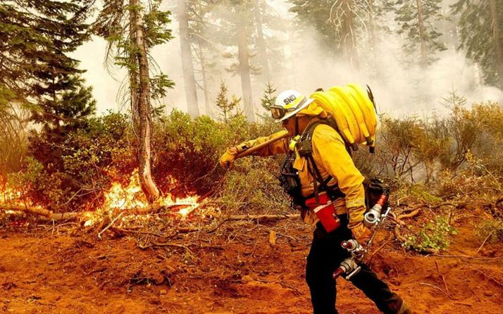 Akdeniz ülkeleri orman yangınlarıyla mücadele ediyor