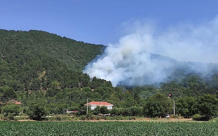 İzmir'in Ödemiş ilçesinde de orman yangını çıktı! Ekipler müdahale ediyor