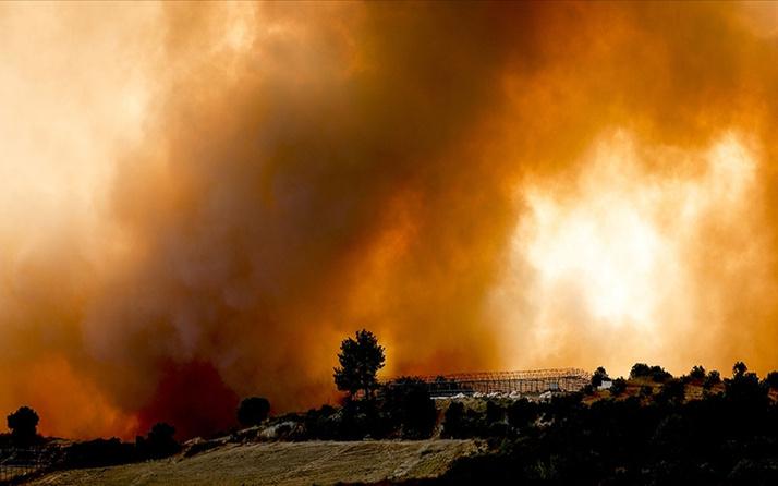 AFAD'dan ülke genelindeki yangınlara ilişkin açıklama! Manavgat'ta 3, Muğla'da 1 kişi hayatını kaybetti