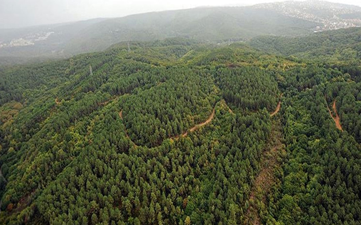 Çanakkale'de ormanlık alanlara giriş çıkışlar ve ateş yakılması yasaklandı