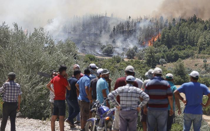 Yangın Alanya'ya sıçradı mahalleler tahliye ediliyor! Belediye başkanı gelmeyin diyor