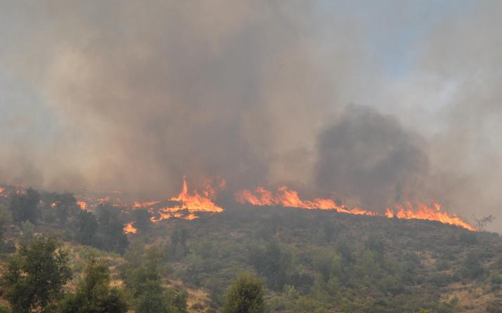 Can kaybı artıyor! Ülke genelindeki yangınlarda son durum