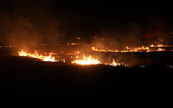 Anız yangını rüzgarın etkisiyle devasa boyuta ulaştı! Ekili alanlar zarar gördü