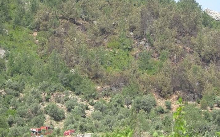 Çorum'da ağustos ayı süresince ormanlara girişler yasaklandı