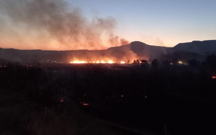 Ankara Nallıhan'da çıkan yangın kontrol altına alındı