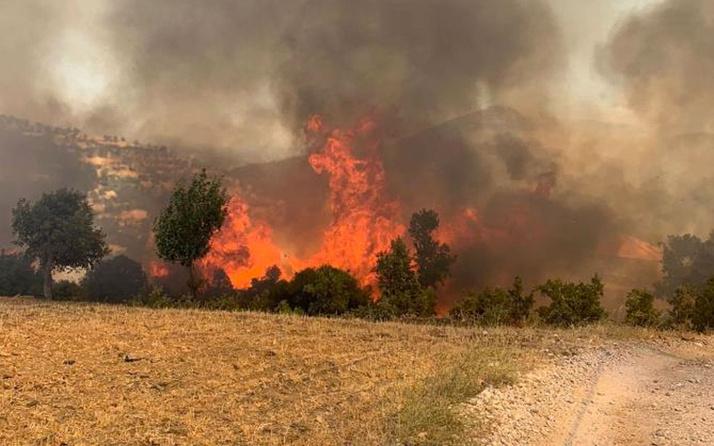 Yunanistan'ın Türkiye'ye yangın teklifi yalan çıktı