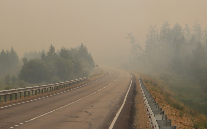 Rusya'da 217 noktada yangın çıktı