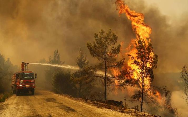 Manavgat'taki yangınla ilgili 1 kişi tutuklandı