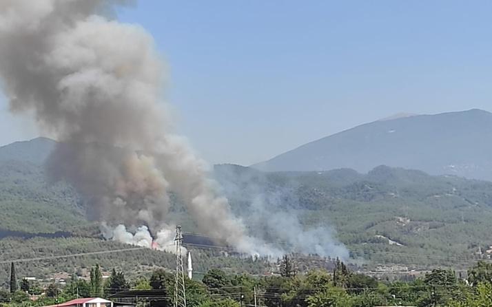 Hatay'da orman yangını çıktı! Ekipler harekete geçti