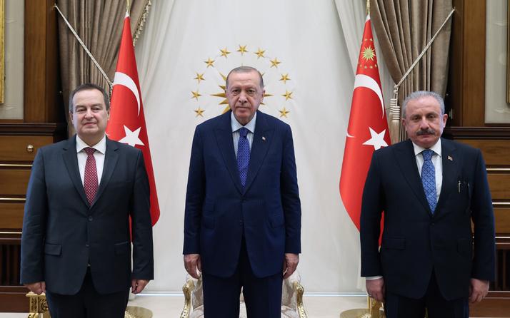 Cumhurbaşkanı Erdoğan Sırbistan Meclis Başkanı Daçiç ile görüşüyor