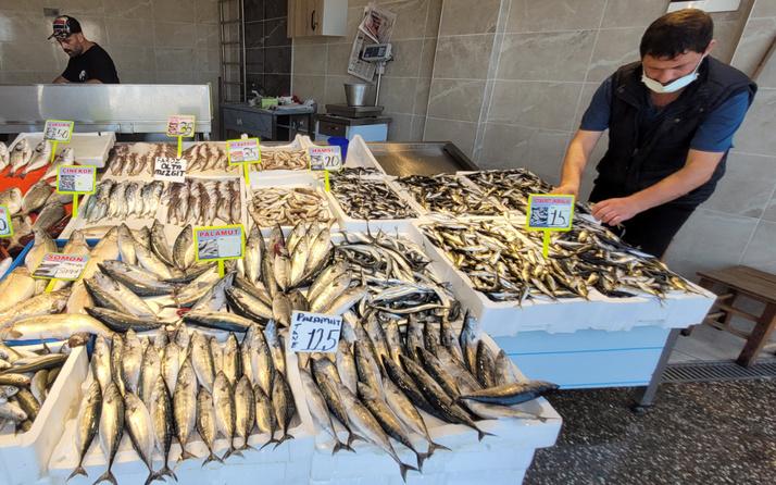 Tezgahlarda bolluk yaşandı balık ucuzladı! İşte fiyatlar...