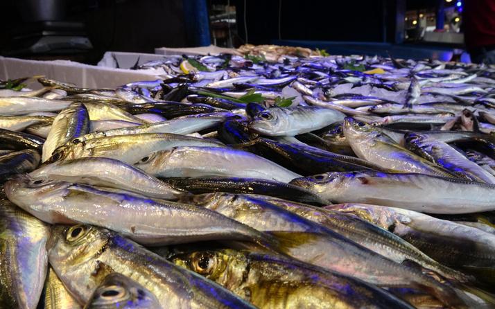 Karadeniz'de tezgahlar vatandaşın yüzünü güldürdü! İşte balık fiyatları...