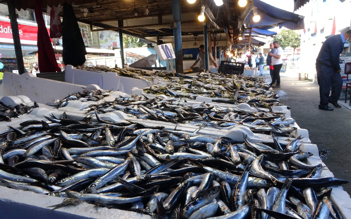 Tezgahlar doldu taştı ama müşteri yok! İşte balık fiyatları...