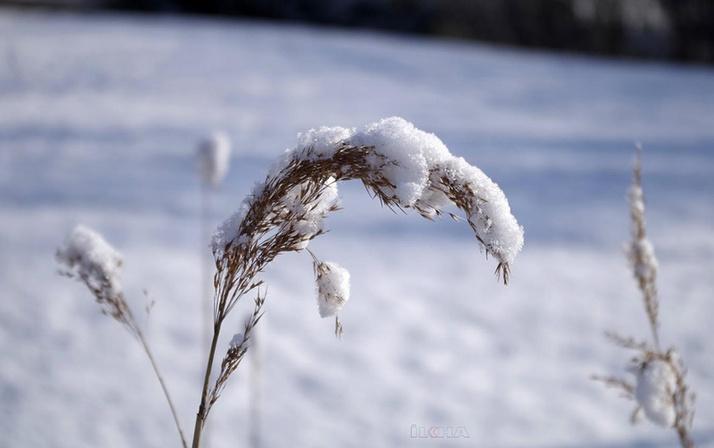 Meteorolojiden 'zirai don' uyarısı!