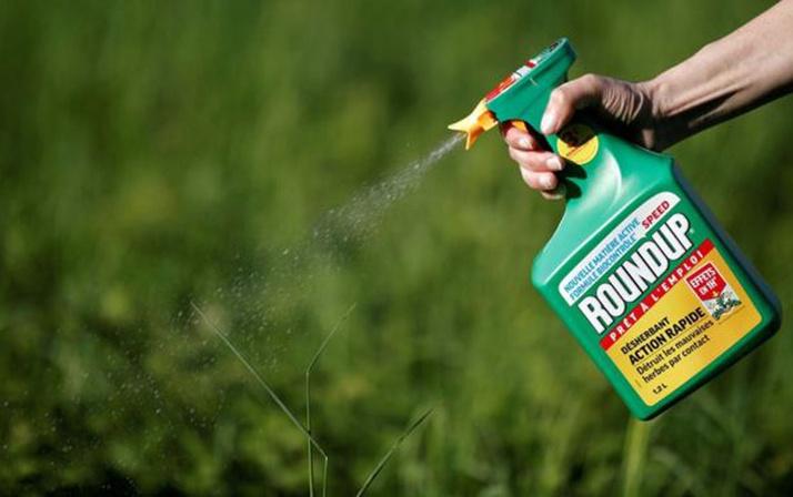 Monsanto'ya 80 milyar dolarlık kanser cezası