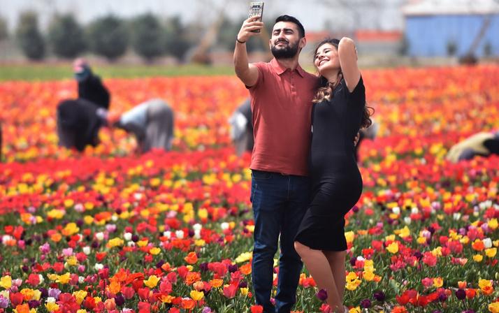 Konya Ovası'nda turistler fotoğraf için sıraya giriyor