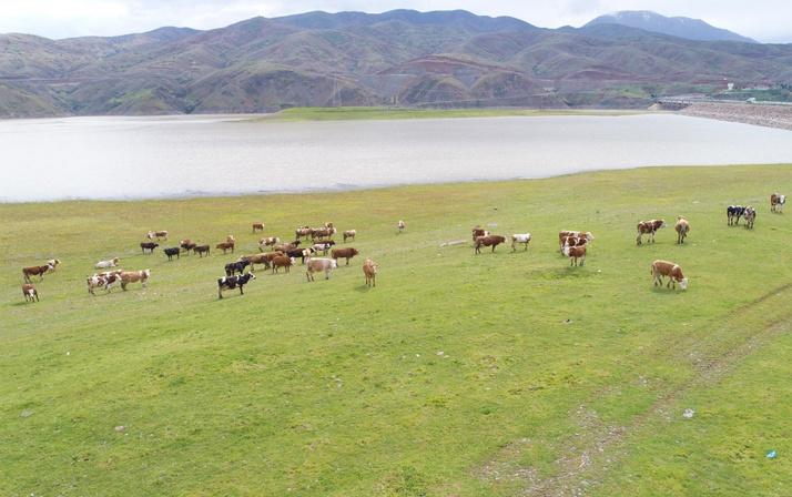 5 yıl önce kuruyan Murat Nehri'nin son hali hayranlık uyandırdı