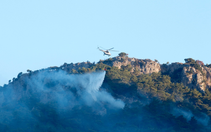 Muğla Dalaman'da yangın yeniden mi başladı? Bakan Pakdemirli'den açıklama