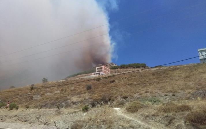 Burgazada ve Balıkesir'de eş zamanlı yangın çıktı! Ekipler müdahale ediyor