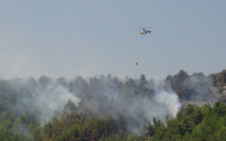 Mersin'de orman yangını! Kontrol altına alındı