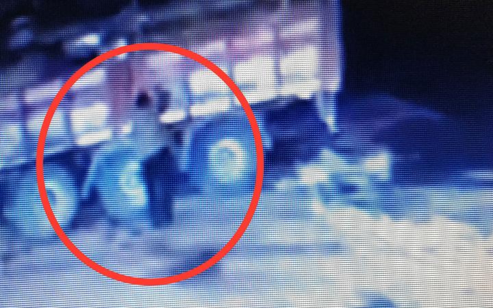 Ordu'da üzerine kamyondan tomruk düşen şoför hayatını kaybetti