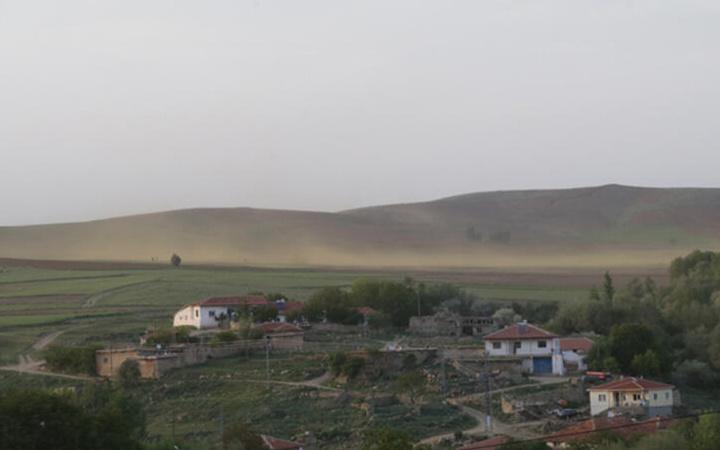 Köylüler çekti Yozgat'a bulut gibi geldiler! Esrarengiz sarı sinek istilası