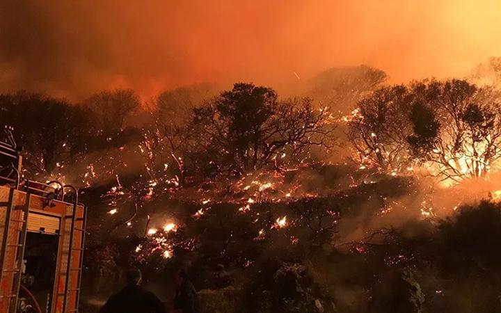CZN Burak'tan Antalya yangınında ev tipi söndürücüyle 'şov' Rezil oldu!