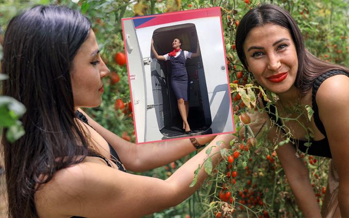 Antalya'da hostes Cemre gezerken gördü! Bir taneyle başladı 4 dönüm sera kurdu
