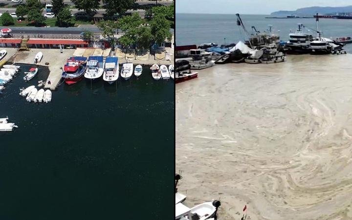 Tekirdağ'da deniz salyası temizleme çalışmalarında ilk sonuç: Kıyıda etkisini yitirdi