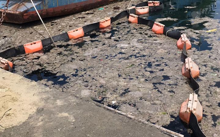 İstanbul Üniversitesi müsilajı deniz bakteri izolatlarıyla temizlemeyi başardı