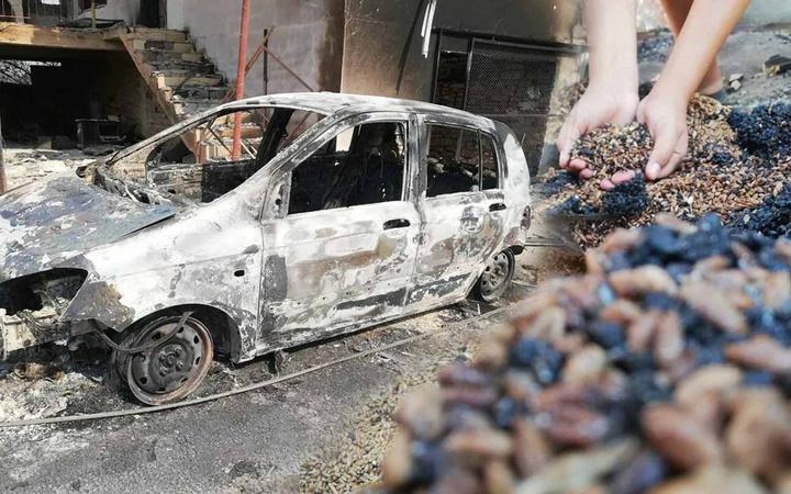 Antalya Manavgat'taki yangından kaldı küllerin arasından topladılar