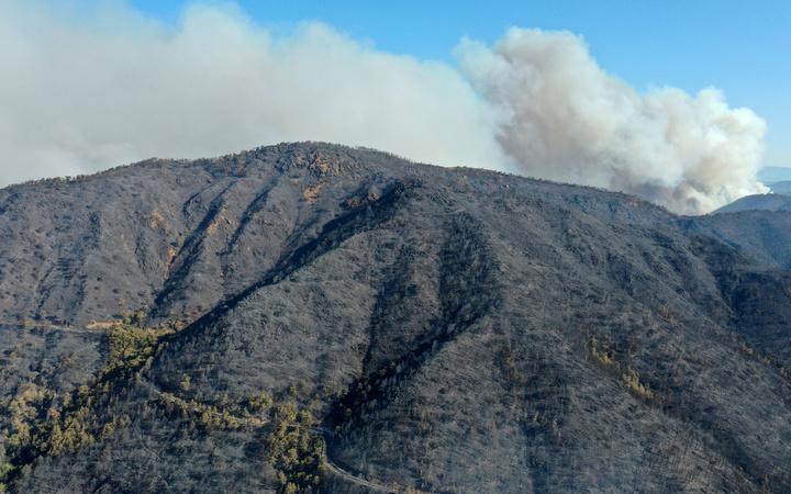 Marmaris'te yangın! Sabah acı görüntü ortaya çıktı: Küle dönen ormanlar görüntülendi