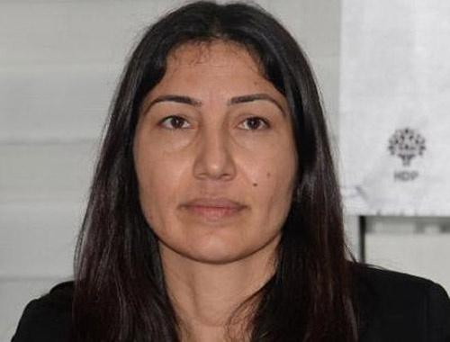 HDP'li vekil ve ailesine suikast iddiası!