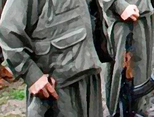 PKK'nın Bitlis'teki tuzakları imha edildi