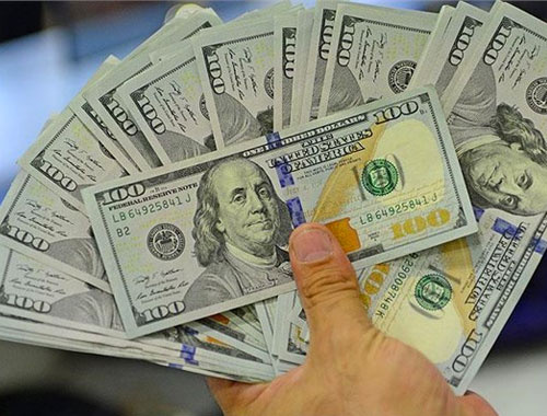 Dolar kaç TL olur dolar kuru anketi sonuçları