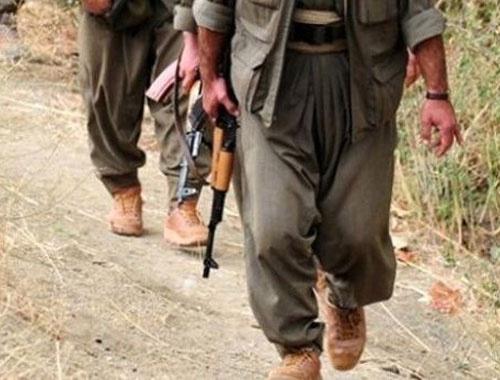 Tunceli'de çatışma! 4 PKK'lı öldürüldü!