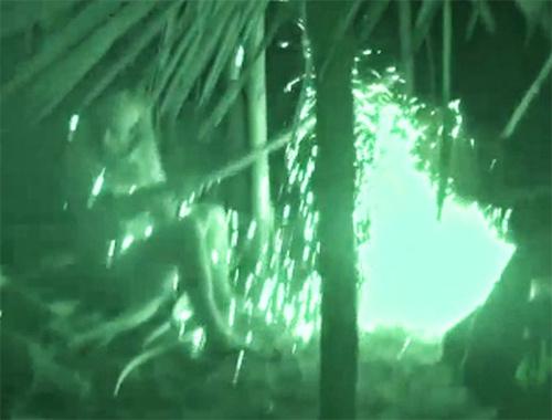 Survivor Ünlüler adasında patlama meydana geldi!